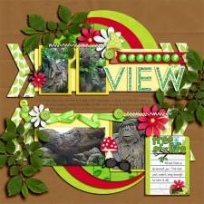 amazing_view.jpg