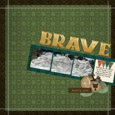 137_Brave_2_resize.jpg