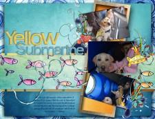 Yellow_Sub.jpg
