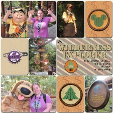 wildernessexplorer.jpg