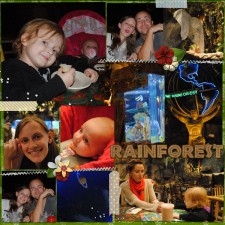 RainforestCafe.jpg