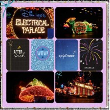 Electrical-Parade-n.jpg