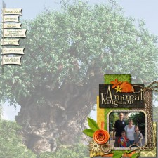 Animal-Kingdom-opening-page-web.jpg