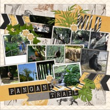 pangani_trail.jpg