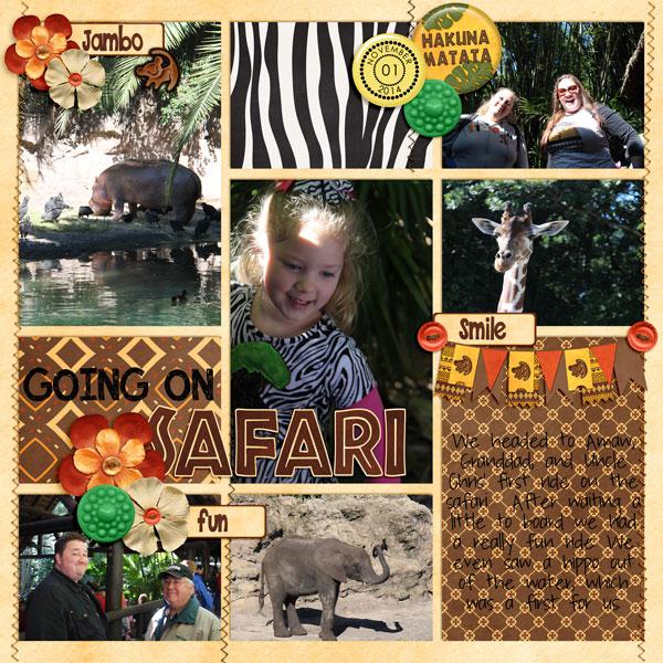 Safari17
