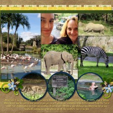 safari22.jpg