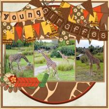 SS_179_Young_Giraffes_web.jpg