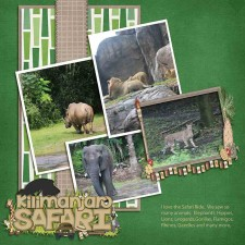 Safari-web2.jpg
