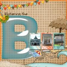 Beach_Club_copy1.jpg