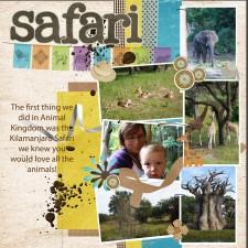 safari13.jpg