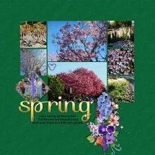 MSSS_206_Spring_sm.jpg