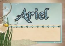 ariel33.jpg