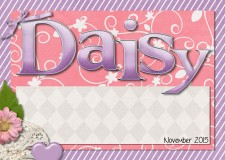daisyduck.jpg