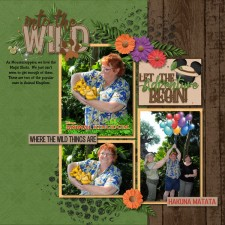 Into-The-Wild-web1.jpg
