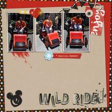 wild-ride1.jpg