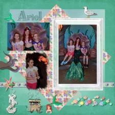 Meeting_Ariel3.jpg