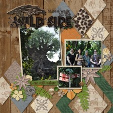 Take-A-Walk-On-The-Wild-Side-web.jpg