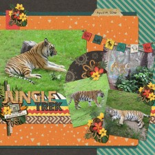 JungleTrek-Tigersweb.jpg