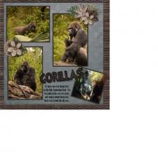 gorilla_-_Copy.jpg