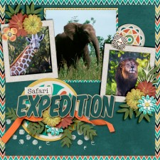 Safari-Expedition4.jpg