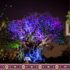 TreeofLifePage1Web.jpg