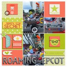 Roaming_Epcot.jpg