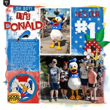 D3-PM-HS-DonaldDuck-1-w.jpg