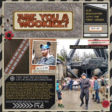 WDW2019-Xmas-D4-DHS-BSO-AreYouAWookiee-w-700px.jpg