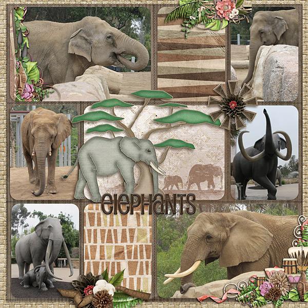 elephantsweb