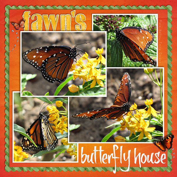 fg_butterflygarden600