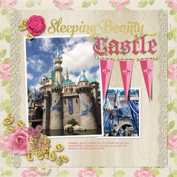 sleeping-beauty-castle-1114msg