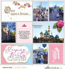 17disney_castle.jpg