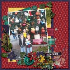 2007-12_sts-Home4Christmas_web.jpg