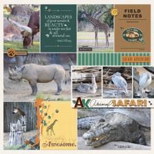 2017-april-20-safari.jpg