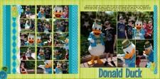 6-17-Donald-Duck-Small.jpg