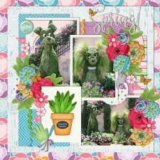 A_Succulent_Spring.jpg