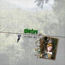 DCL11-Canopy-Adventure1.jpg