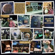 Disney2019_5_GE_Merchandise.jpg
