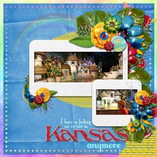 Kansas_MS.jpg