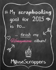 MS_2015-goals.jpg