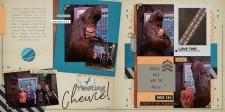 Meeting-Chewie-full.jpg