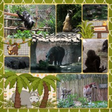 Pangani-Forest_web1.jpg