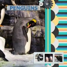 Penguins_Sea_World_resize.jpg