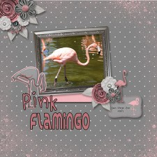 Pink_Flamingo-001_copy.jpg