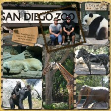 SD_Zoo-001_copy.jpg