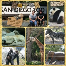 SD_Zoo-001_copy1.jpg
