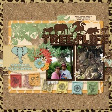 Tree_of_Life15.jpg