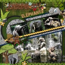 WDW611-Jungle-Elephantsweb.jpg