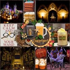 Wizard-Magic-_-Pocket-Perfect-V12.jpg