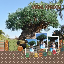 animal_kingdom_TOLw.jpg